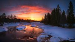 Sunset and Sun pillar (M.T.L Photography) Tags: landscape panorama riverkiiminkijoki finland nikond810 nikkor1424 water winter snow ice sunset outdoor nordic mtlphotography sunpillar