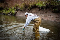 River Cleanup 18 (1 of 1)