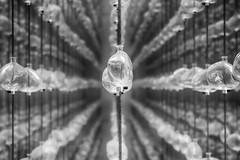 Drops of Memory no. 2 -Museo de Memoria y Tolerancia- (Mexico City, México. Gustavo Thomas © 2017) (Gustavo Thomas) Tags: drops gotas memoria memory sculpture intallation instalación museo galería gallery memoriaytolerancia cdmx mexican mexicano méxico monochrome mono bnw blancoynegro blackandwhite patrons patrones repetition repetición