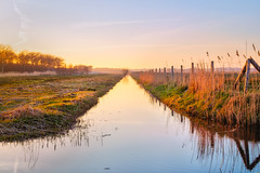 Lowlands Behind the Sea (3) (D.ROS) Tags: 2017 beautiful blue canal clouds color dark dutch flowers grass green light magenta mill nature netherlands outdoor outside polder quiet red schagen sky spring sun sunset water yellow 3xp supershot