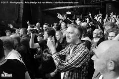2017 Bosuil-Het publiek bij Purpendicular 18-ZW