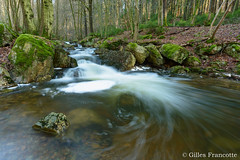 Chefna Waterfall (gillesfrancotte) Tags: 2017 amblève ardennes aywaille chefna d800 nikon outdoor quarreux stoumont cascade creek eau fall landscape longexposure nature printemps spring stream torrent water waterfall waterscape wallonie belgique nikonpassion