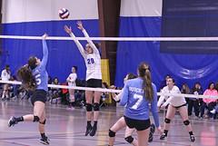 IMG_2595 (SJH Foto) Tags: girls volleyball teen teenager team quickset storm u14s net battle spike block action shot jump midair