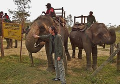 "NEPAL, Royal Chitwan-Nationalpark, Wir sagen: "" Goodbye  Chitwan"" , 15423/8204 (roba66) Tags: royalchitwannationalpark goodbye abschie elefant m elephant safari reisen travel explore voyages roba66 visit urlaub nepal asien asia südasien ""royal chitwannationalpark"" nationalpark landschaft landscape paisaje nature natur naturalezza tier tiere animal animals creature"