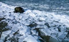 WP_20170113_11_04_41_Pro (nanison) Tags: lago ghiaccio lake ice avigliana piemonte italia italy inverno winter