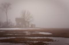 (jtr27) Tags: dsc03936fr1e jtr27 sony alpha nex6 nex emount mirrorless fujian 35mm f17 manualfocus marsh maine landscape fog newengland slrmagic