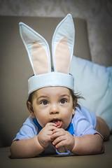 (Lays Lima Fotografia) Tags: baby boy babyboy coelho pascoa rabbit pretty cute