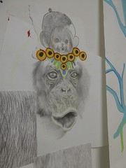 (Brynhild E Winther) Tags: brynhildwinther teikning drawing animal art animism ape auge