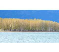 Koprinka (borisvasilev) Tags: koprinka bulgaria kazanlak water dam lake blue tree trees nature simple minimalistic layers panasonic digitalphotography