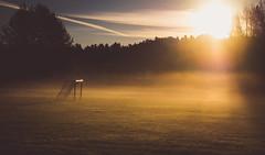 Sunrise Kickoff (trm42) Tags: autumn vantaanjoki sunrise river finland fog finnishautumn syksy fall helsinki suomi savela