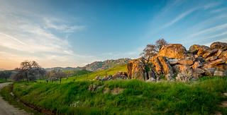California Foothills in Spring