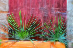 Rays of Green (macplatti) Tags: xt10 xf1855mmf284rlmois green gruen rays strahlen doppelsonne duo palms plants maccagno lombardia italy ita