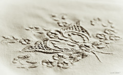 Embroidery... (lucascobos) Tags: texture monochrome embroidery bordado tecido tissue fabric