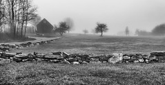 Stone Fence With Fog (Me in ME) Tags: harpswell maine fog stonefence bw silverefexpro
