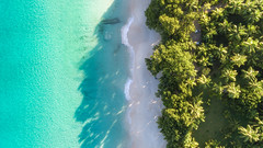 Seychellen - Anse Lazio