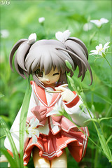 When flowers bloom (gwennan) Tags: goodsmilecompany yuzuhara konomi yuzuharakonomi toheart2 nature flower flowers green spring toy pvc jfigure japan figures figure cute anime closeup colors color macro