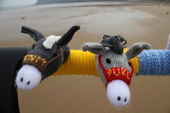 Knitted Donkeys (Munki Munki) Tags: summer beach wool pier seaside knitting handmade cleveland donkey publicart knitted saltburn seasidefestival knitandpurl seasidedonkeys yarnbombers
