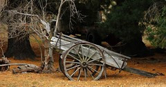 The Engine is Long Gone (Tones Corner) Tags: heritage rustic centralotago dray farmimplement nzscene ruralnz cambrians