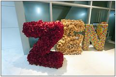 Shopping mall in Bangkok, Thailand (Michael Neeven) Tags: flowers roses mall shopping thailand store bangkok bears zen tropical rozen department tropics bloemen kaufhaus beertjes tropen tropisch warenhaus warenhuis