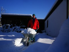 Wintersport mit Schubkarre (bratispixl) Tags: germany oberbayern wintersport selfie schneerumung chiemgau traunreut schneeschieben heckenbewsserung winterwasserbedarf bratispixl