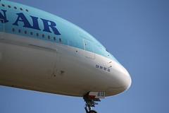 Korean Air Airbus A380 (AMSfreak17) Tags: airport frankfurt air landing korean airbus a380 approach fra fraport frf eddf hl7613 amsfreak17