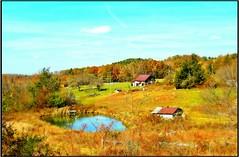 The Pond... (Patlees) Tags: va blueridgemts