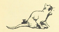 Image taken from page 105 of 'Songs for Little People. [With illustrations by H. Stratton.]'