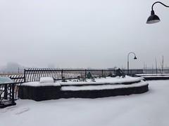 "IMG_2076 (Lynette_1_2_3) Tags: ""cold weather"" ""snow"" ""wind"" ""february ""©portlandoregondailyphoto 2014"""
