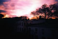 bushwick sunset. (mr.moore) Tags: new york nyc film brooklyn analog 35mm lomo lca xpro lomography cross process