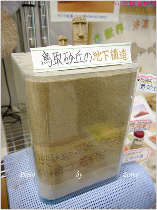 鳥取必玩 鳥取砂丘 (43).JPG
