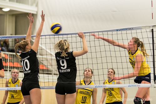 "5. Heimspiel vs. TV Gladbeck • <a style=""font-size:0.8em;"" href=""http://www.flickr.com/photos/88608964@N07/32663897992/"" target=""_blank"">View on Flickr</a>"