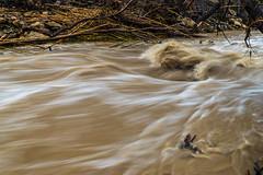 Surging Stream (tquist24) Tags: california campcomfort nikon nikond5300 ojai sanantoniocreek creek geotagged longexposure muddy park river water unitedstates