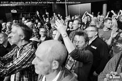 2017 Bosuil-Het publiek bij Purpendicular 17-ZW