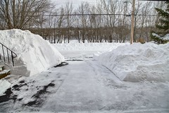 Overnight accumulation, Dartmouth Nova Scotia - after (internat) Tags: 2017 canada novascotia ns dartmouth atlanticstorm happyvalentinesday hdr beforeandafter