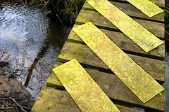 Day #3340 (cazphoto.co.uk) Tags: panasonic lumix dmcgx7 panasonic20mmf17lumixgiiasph walking stebbing bridge stream treads diagonals nonslip geocaching project365 beyond3288 210217