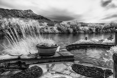 """Riverbend Hot Springs in Near Infrared (inlightful) Tags: nir """"near infrared"""" hotsprings riverbend river torc truthorconsequences sierracounty newmexico pools springs riogrande hottub relax soak vacation outdoors nature"""