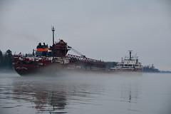 Ore Freighter in Spring Fog - Herbert C. Jackson - St. Mary's River - Sault Sainte Marie - Michigan (Mikel Classen) Tags: orefreighter herbertcjackson stmarysriver upperpeninsula michigan fog greatlakes