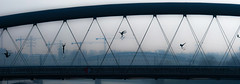 Urban Shapes (whidom88) Tags: urban shapes bridge poland krakow morning light