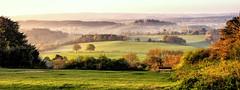 Sunrise over Newlands Corner (Kirsten Osa) Tags: albury england unitedkingdom gb