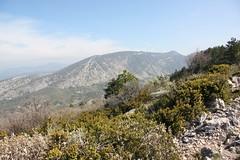 IMG_0611 (Gilles Couteau) Tags: provence vaucluse ventoux montventoux