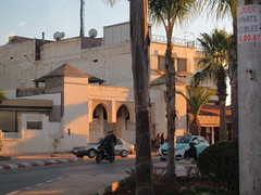 Motorcycle and palms, late afternoon, Meknes, Morocco (Paul McClure DC) Tags: meknes meknès morocco almaghrib jan2017 architecture historic