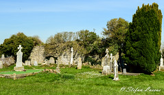 Rahara Church in County Roscommon (Salmix_ie) Tags: rahara county roscommon sheelanagig pagan pre christian sacred fertility sculpture druid rites holy nikon nikkor d500 march 2017