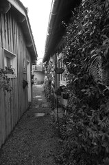 151227IMGP7761 (aureliedumartin) Tags: borddemer villages de pêcheurs cap ferret noir et blanc seaside