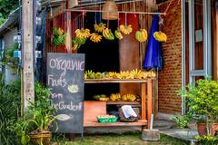 Früchte - Fruits (Jutta M. Jenning) Tags: asien essen markt maerkte lecker verkaufen kaufen people asia fruechteobst obststand fruechtestand bananen typisch fruit fruits organic bio vitamine gesund kohphangan