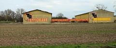 Teppichland. (universaldilletant) Tags: geestgottberg teppichlager teppichland berühmt preiswert schild schilder sign signs