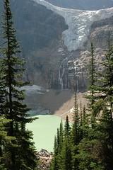 DSC_0497 (Les photos du chaudron) Tags: canada favoris jasper lieu