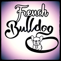 French Bulldog Hand drawn Lettering Logo (Hebstreits) Tags: animal beautiful black bull bulldog calligraphy canine card cheerful cute design dog dogs drawing drawn ear element face french graphic hand head hipster icon illustration image isolated lettering logo pet portrait pug puppy shape sign silhouette sweet symbol type typo vector white