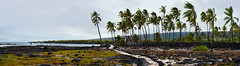 Pu'uhonua O Honaunau Path Panorama (Geoff Sills) Tags: puuhonua o honaunau national historical park panorama path tropical hawaii big island historic beach cloudy travel nikon d700 35mm 14g geoffrey william sills geoff illumeon digital illumeondigital