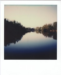 evening mood (lengvari) Tags: polaroid impulse portrait impossible project color test film instant roidweek lake tree sunset outdoor baranya hungary