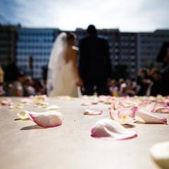 Wedding day (Zeeyolq Photography) Tags: couple flowers love marriage wedding weddingday